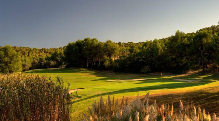 Golf Santa Ponca III
